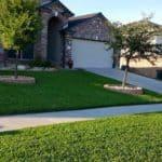 Beautiful House Lawn